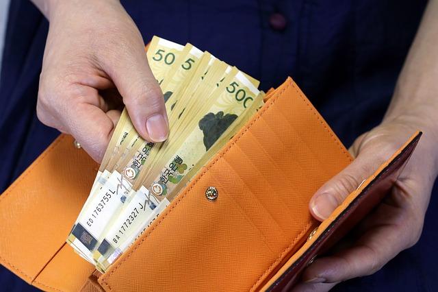 bankovky, hnědá peněženka